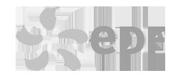 flexio-client-edf
