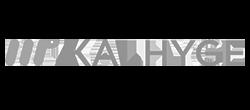 Flexio-client-Kalhyge